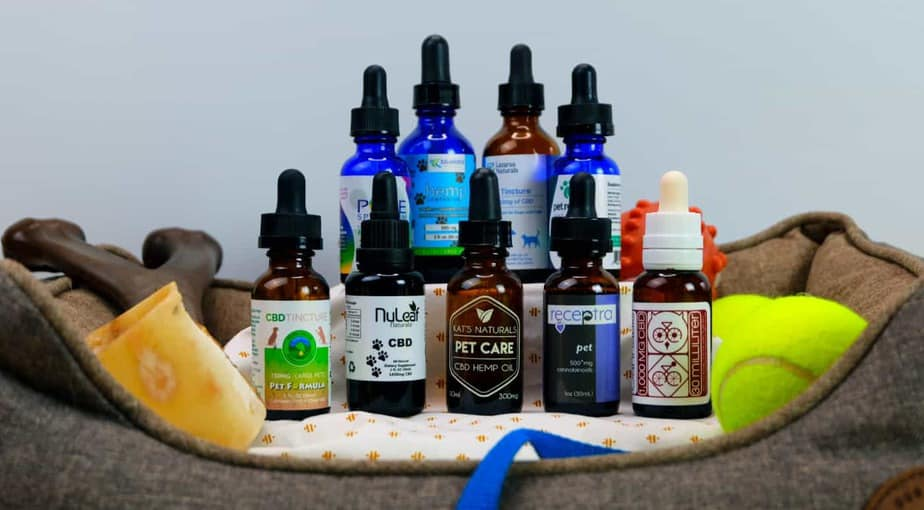 The 10 Best CBD Oils for Dogs (and Other Pets) for 2019
