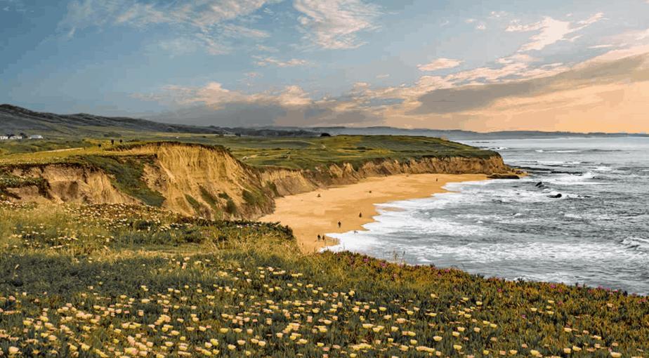 Half Moon Bay | California
