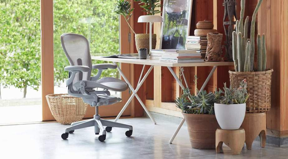 The 10 Best Ergonomic Office Chairs for Back Pain for 2020 ...