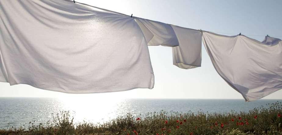 Best Cotton Sheets