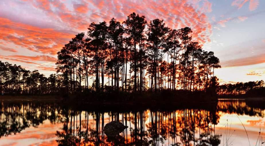 The Everglades, FL