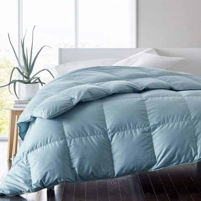 Alberta Euro Down Comforter