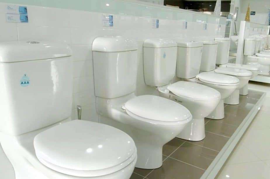 Complete Guide to the Modern Toilet