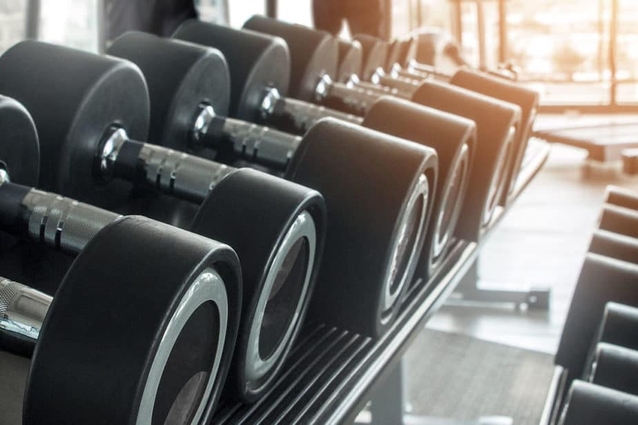 How Protein Builds Muscle After a Workout