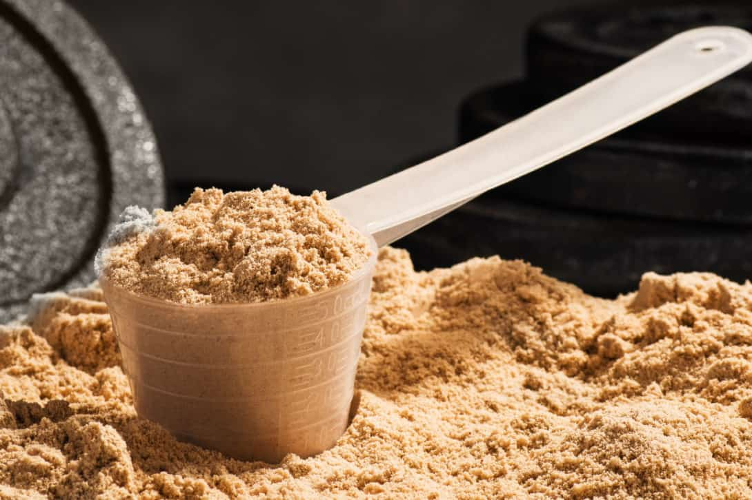 Best Protein Powders