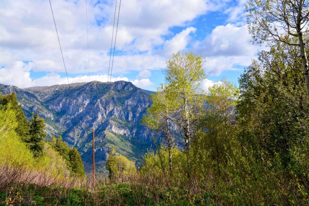 Brim Mountain Bike Trail at Powder Mountain
