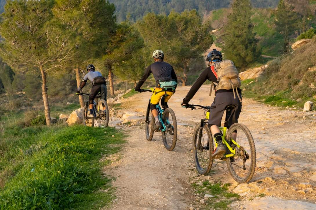 Best Mountain Biking Trail
