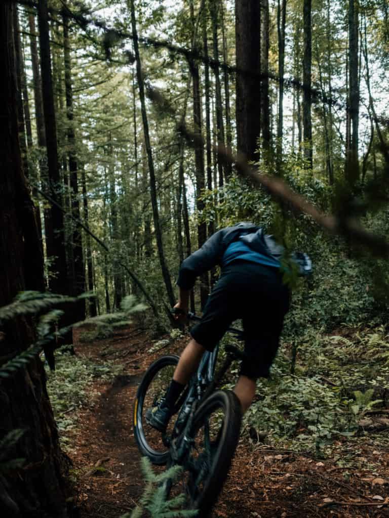 Bike Trail in Santa Cruz, CA