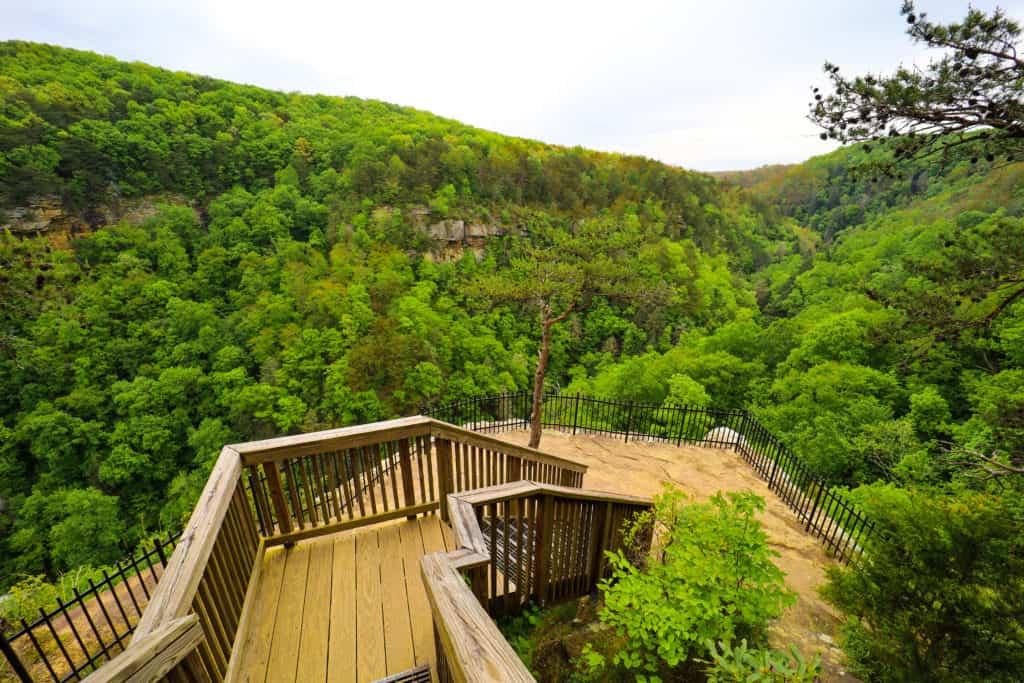 Bear Creek Trail, GA